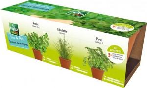 Allié précieux en cuisine, le trio de « Pots Saveurs Aromatiques » (persil commun, ciboulette commune, basilic grand vert) est le parfait compagnon pour les salades.