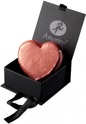 Amorino-presse 8429_FdBlanc