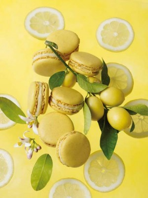 Macaron infiniment citron © Bernhard Winkelmann