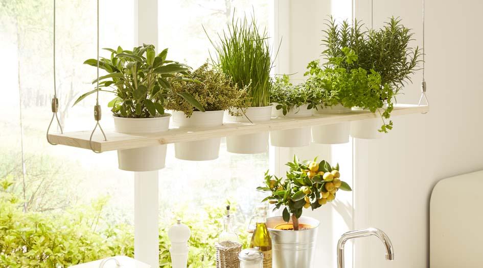 comment faire un potager suspendu pour vos herbes aromatiques savoir. Black Bedroom Furniture Sets. Home Design Ideas